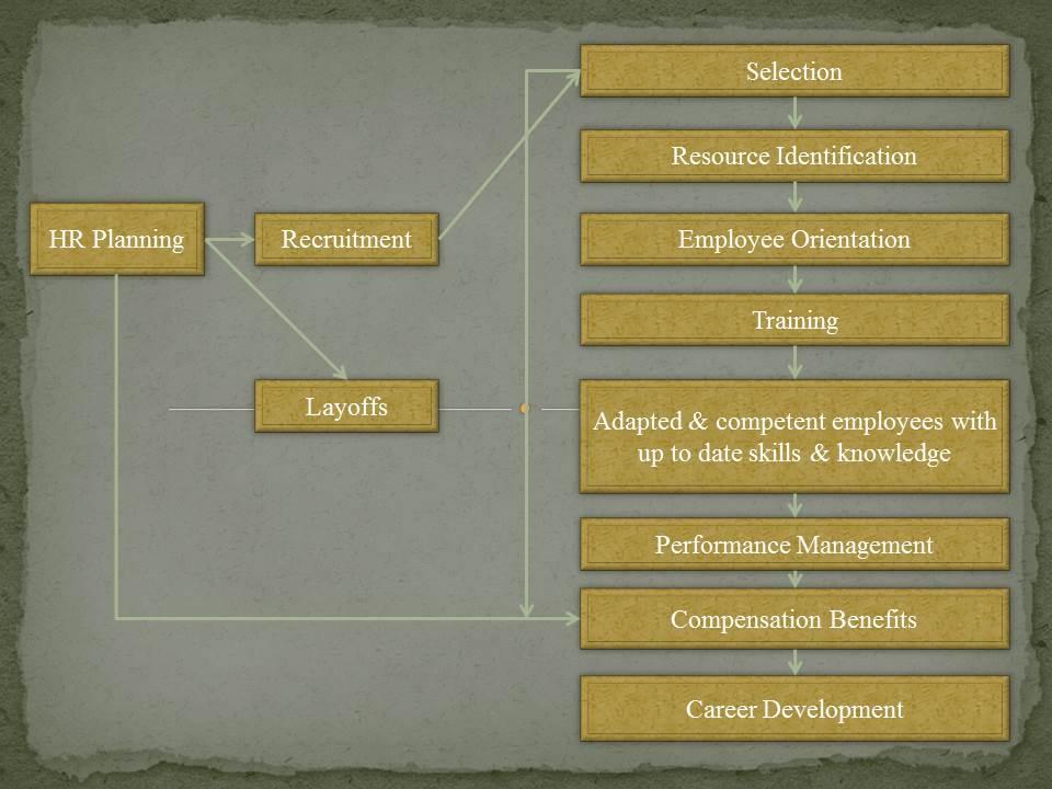 Human Resource Management - Part 1 1